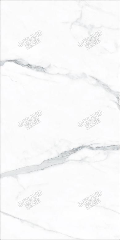 SNL00790180X工装定制